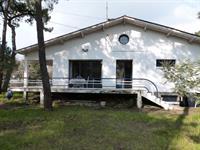 Villa familiale sous les pins à La Grière Plage
