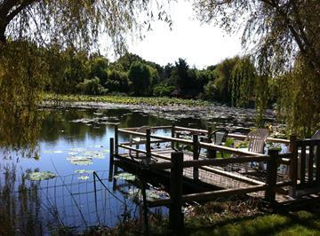 Chalet moderne au coeur de la verdure : piscine collective et mini golf