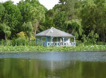 Chalet moderne au coeur de la verdure avec piscine collective et mini golf